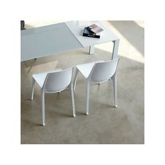 White Vanity Contemporary Dining Chairs Public Seating Cushion Filling Mid Century Modern