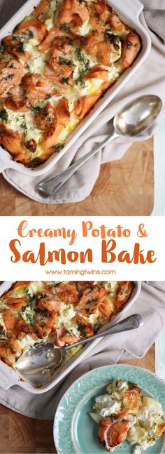 A delicious, warming, comfort food creamy salmon bake from TamingTwins.