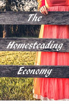 Could you live without an income? Homesteading is preparedness in action - what do you need to manage daily in the face of job loss? Homestead Farm, Homestead Living, Homestead Survival, Survival Tips, Survival Skills, Mini Farm, Living Off The Land, Urban Homesteading, Hobby Farms