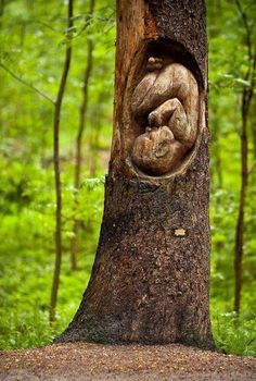 she is our mother, society as we know it was cradled by nothing but mother earth in its infancy. acknowledge this and thank her.