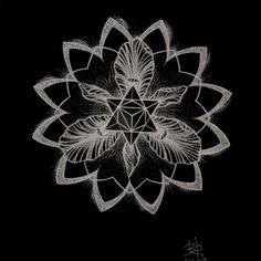 merkaba lotus light activation