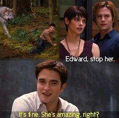 Twilight - Stop her Twilight Jokes, Twilight Saga Books, Twilight Saga Series, Twilight Edward, Twilight Movie, Jasper Twilight, Twilight Breaking Dawn, Twilight New Moon, Edward Bella