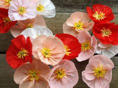 Colourful Crepe paper poppies hand made to order