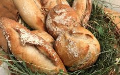 Roggenweckerl mit Sauerteig - Backen mit Christina Sourdough Recipes, Bread, Cooking, Food, Pizza, Recipes, Sandwich Loaf, Pastries Recipes, Cool Recipes