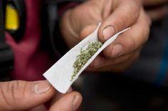 EE.UU. rechaza sacar la marihuana de la lista de drogas más peligrosas | Radio Panamericana