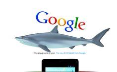 In case you missed it... Google digs #sharks #googleshark