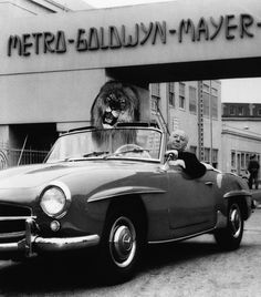 Alfred Hitchcock poses in his Mercedes-Benz 190 SL convertible with an illusion of the MGM lion in the passenger seat. Hitch was on the studio lot to direct his only MGM film, the classic 1959 thriller North by Northwest. Cars Vintage, Antique Cars, Vintage Photos, Alfred Hitchcock, Hitchcock Film, Corvette, Mercedes Benz 190, North By Northwest, And So It Begins