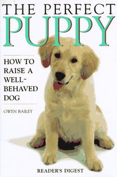 The Perfect Puppy : How to Raise a Well-Behaved Dog - http://www.thepuppy.org/the-perfect-puppy-how-to-raise-a-well-behaved-dog/