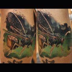 fly by Dmitry Vision | tattoo artist – Pittsburgh Pa, USA