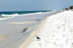 Fort Walton beach scene