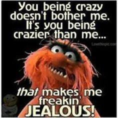 you being crazy funny cute memes lol funny quotes funny sayings the muppets Funny Cute Memes, Haha Funny, Lol, Funny Stuff, Funny Things, Funny Shit, Freaking Hilarious, Random Things, Awesome Stuff