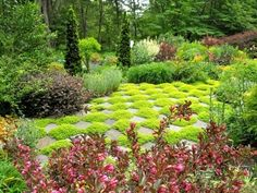 Could you do a similar patterning with moss and paving stones?  Looks gorgeous in a woodland setting.