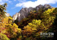 금강산의 단풍계절 (3)