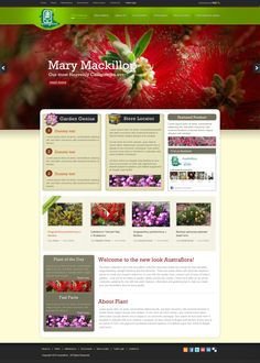 #MaryMackillop #WebsiteDesigns