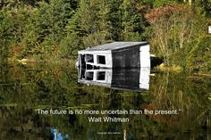 #WaltWhitman's #quote graces this sinking structure in a pond in #Maine, at a warmer time of year.  If this #quotograph resonates with you feel free to #repost for others to enjoy