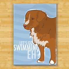 Duck Toller Magnet. Too bad mine hates swimming. (What a freak!)