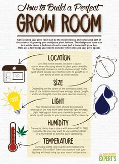 How to Build a Perfect Grow Room: Medical Marijuana Info Board Project Info: Project Difficulty: Simple MaritimeVintage.com