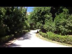 National garden of Athens - Park Royal Garden, Athens, Greece, Country Roads, Park, Greece Country, Parks, Athens Greece