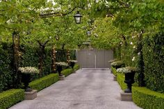 Two different hedges at driveway entrance with breaks of replanting pots. Formal Gardens, Outdoor Gardens, Small Gardens, Modern Gardens, Driveway Landscaping, Landscaping Ideas, Driveway Fence, Driveway Design, Driveway Ideas