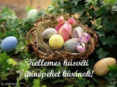 India Is wishing everyone a very Happy Easter! Unwrap those Easter eggs and have a great day! Egg Basket, Easter Baskets, Cute Easter Bunny, Happy Easter, Ostern Wallpaper, Easter Quotes, Easter Wishes, Egg Decorating, Easter Eggs