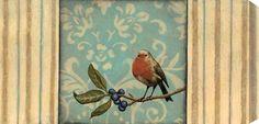 St. John - Morning Suite II #bird #art