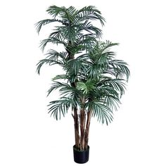 Phönixpalme Robellini 150cm DA Kunstpalmen künstliche Palmen