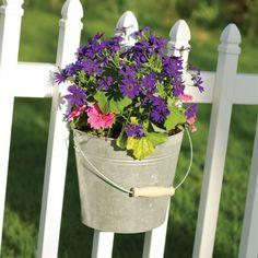 Galvanized Bucket Wall Planter     GardenersEdge.com
