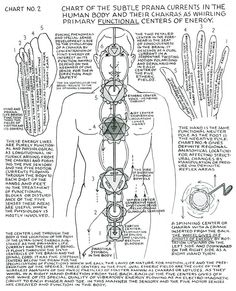 Polarity Therapy Chart
