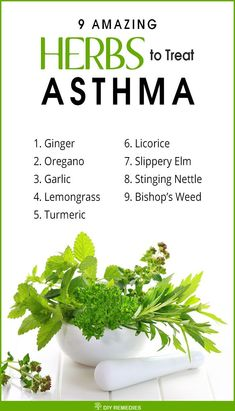Herbs for Treating Asthma There is no complete cure for asthma, we can control its symptoms and the frequency of its attacks by following some diet and lifestyle changes, herbs and over the counter medications. #Asthma #HerbstoAsthma #AmazingHerbs