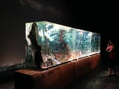 The Triptych by Dustin Yellin at the SCAD Museum of Art