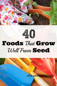 Gardening has wonderful benefits including exercise, stress relief, and growing fresh food. Cost savings on groceries is another added plus. For a garden jumpstart, try some of these 40 Foods That Grow Well from Seed.