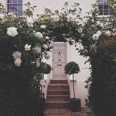 Pretty white rose arbour. Really like the door colour.
