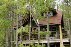 tree houses for adults | Tree house in the trees Eco living