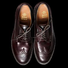 Alden Longwing Cordovan Blucher in Color 8 975 Angle4