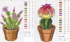 Cactus en punto de cruz