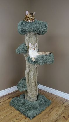 These large cat trees are carpet covered works of art for your home. Crazy cute and not as expensive as you think!