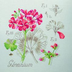 Geranium - from Les Brodeuses Parisiennes (fabric and chart ordered)