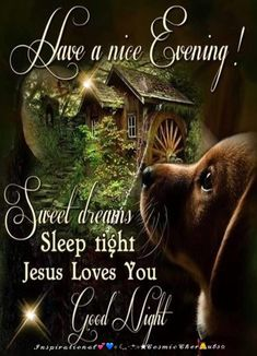 Have a nice Evening! Jesus Loves You. Good Night For Him, Good Night Everybody, Cute Good Night, Good Night Friends, Good Night Sweet Dreams, Good Morning Good Night, Jesus Good Night Images, Good Night Love Messages, Good Night Greetings