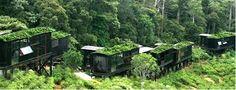 sri lanka -rain forest ecolodge