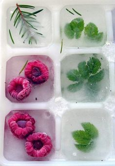 Thinking of a way to dress up your cocktails for your party? How about fruit and herb infused ice cubes? Use mint, raspberries or even rosemary to give your signature cocktail that extra kick! Snacks Für Party, Party Drinks, Tea Party, Halloween Drinks, Partys, Infused Water, Summer Drinks, Holiday Drinks, Thanksgiving Cocktails