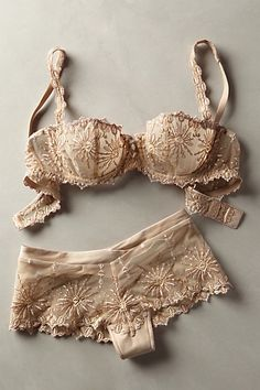 Um conjuntinho simplesmente delicado e charmoso. Ugh. So beautiful, this set. Chantelle Vendome Hipsters - anthropologie.com