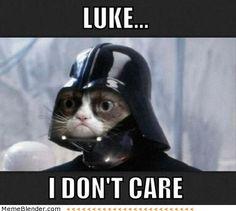 Star Wars Grumpy Cat Meme