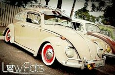 380 Best Vw Bug Images In 2018 Volkswagen Beetles Vw Bugs Beetle Bug