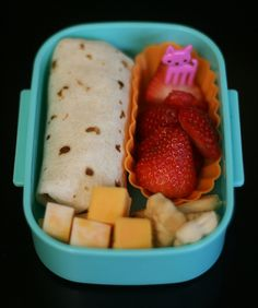 wrap lunch -- this lady makes the cutest lunches for her kids