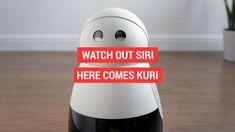 The home robot