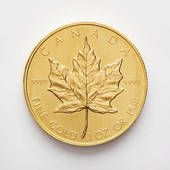 Canadian Coin Canadian Coins, Mint Coins, True North, Rare Coins, Coin Collecting, Dates, Stamps, Success, Canada