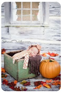 Newborn Photography halloween mini session autumn pumpkin