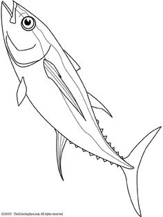 tuna fish line drawing - Google Search
