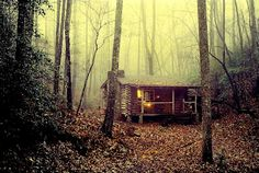 rustic Log Homes In The Woods | tiny-rustic-cabin-in-the-woods-tiny-house-blog-the-flying-tortoise-001 ...