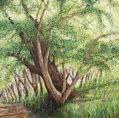 View Barbados Tree by Roz Edwards. Browse more art for sale at great prices. New art added daily. Buy original art direct from international artists. Shop now